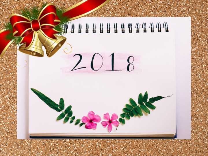 Blogmas Day 20 – A Reflection Of The Year2018